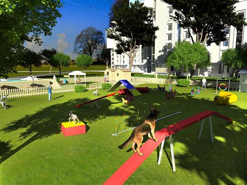 Punto 10: parchi per i cani in tutto il Comune